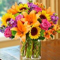 Girasoles Flores Caguas Florerias Caguas Flores Para